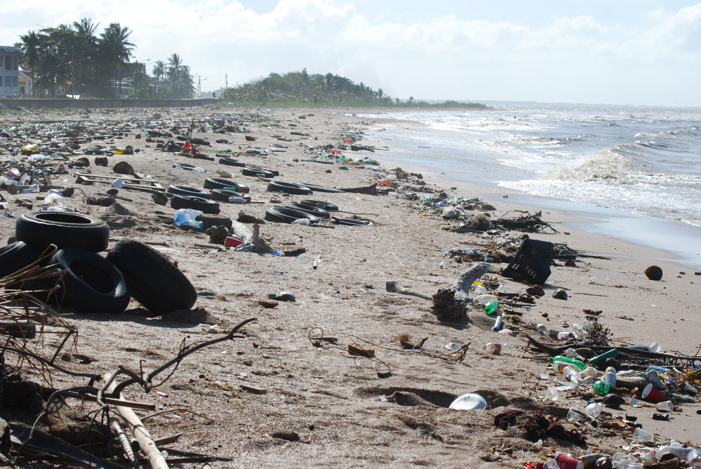 The litter problem on the coast of Guyana, 2010 (Creative Commons 3.0)