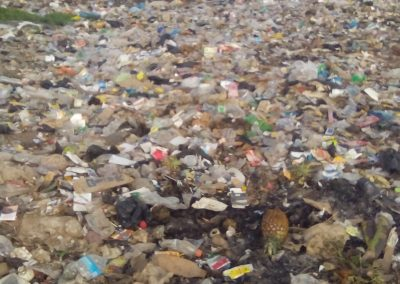 Waste is disposed of in informal dumpsites in Ibadan, Nigeria (Oluwole Ojetunde)