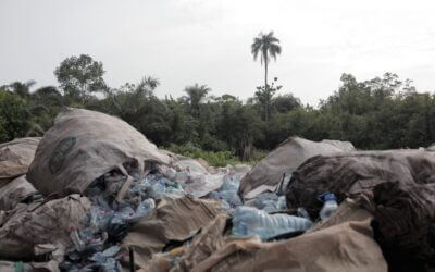 WasteAid's UK Aid Match impact in Cameroon